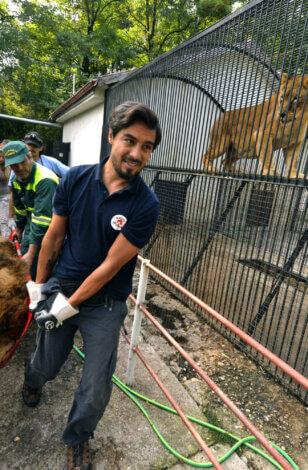 Vier Pfoten – Stiftung für Tierschutz